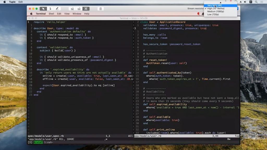 Screensharing-Werkzeug für Programmierer